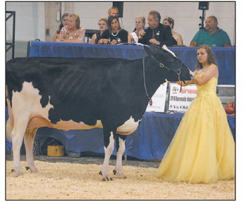 Little Britches, Beefers, Squealers, Lamb  Chops And Kids Show Competition