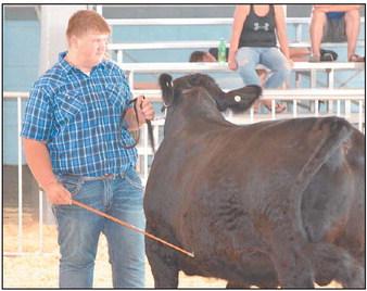 2019 Fond du Lac County Fair Blue Ribbon Winners