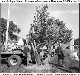 Tree Replacements At  Columbus Parc
